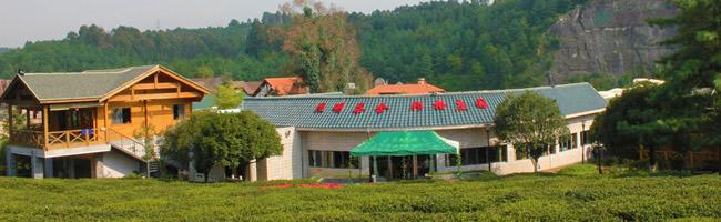 民生园艺公司专业从事园林景观工程设计与施工,苗圃